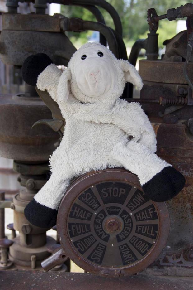 Full Throttle, Captain Sheep!