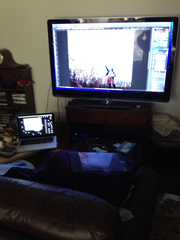 This doesn't really do the setup justice- but I didn't want to get my good camera out...