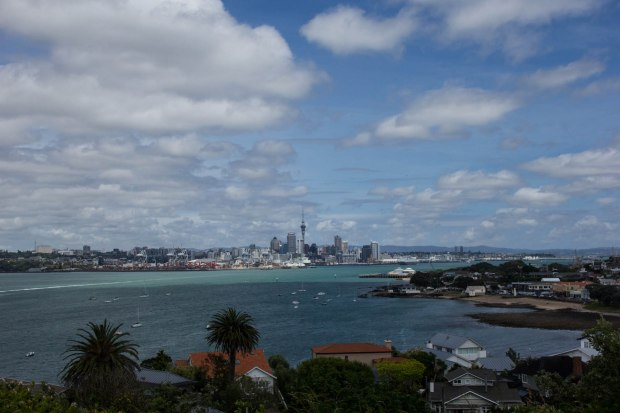 auckland CBD from north head new zealand