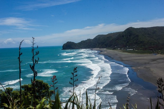 top of lion rock at piha beach new zealand