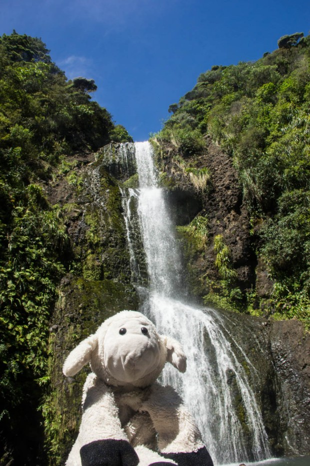 adventuresofsheep at kitekite falls new zealand