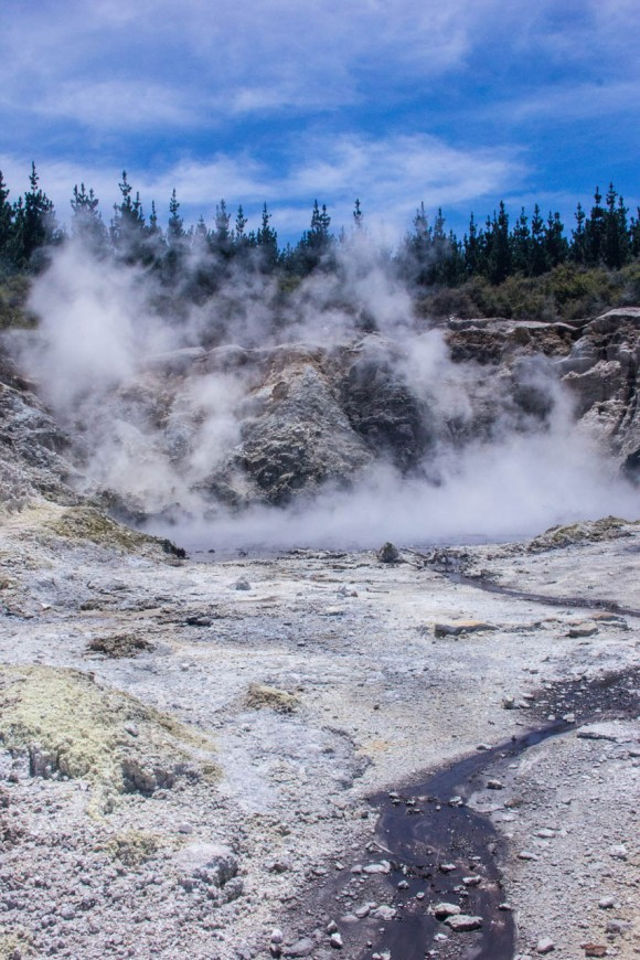 steamy geothermal hot pools rotorua new zealand